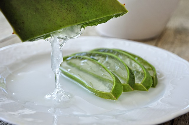 Aloe vera pour l'organisme