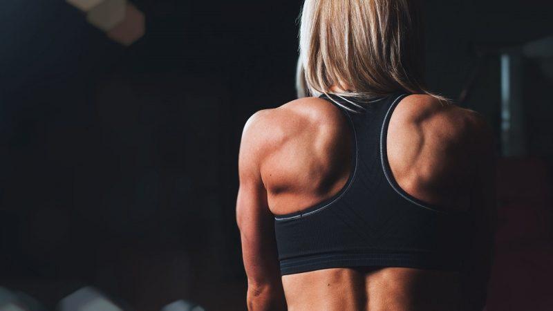 Comment muscler rapidement ses bras?