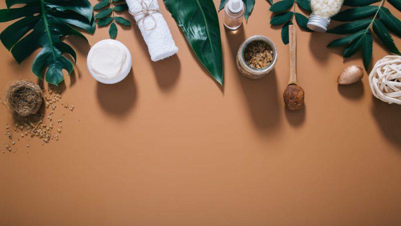 Pourquoi opter pour l'usage des plantes médicinales?